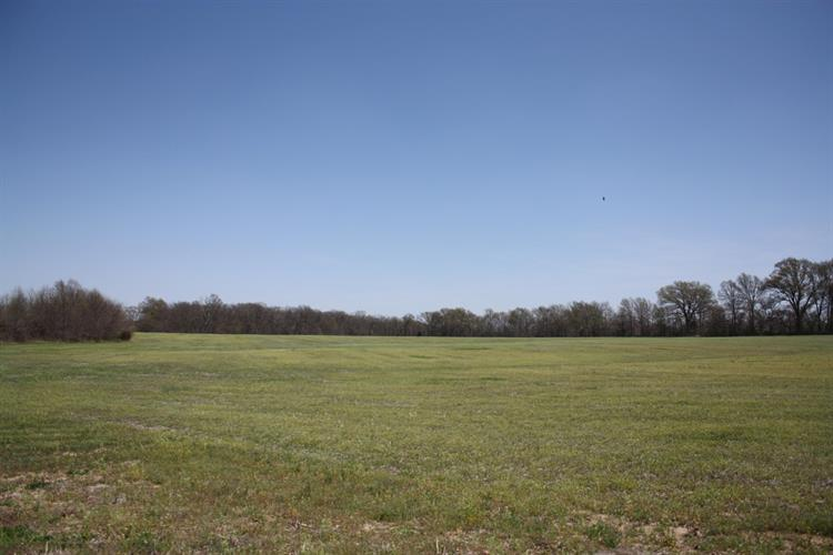 TR 201 E LOW CROSSING RD, Hallsville, MO 65255 - Image 1