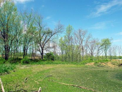 LOT 211 FARLEIGH CT, Columbia, MO