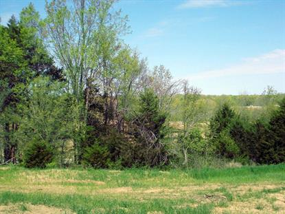 LOT 206 RUDCHESTER DR, Columbia, MO