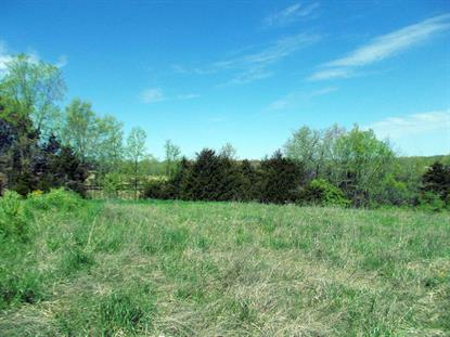 LOT 207 RUDCHESTER DR, Columbia, MO