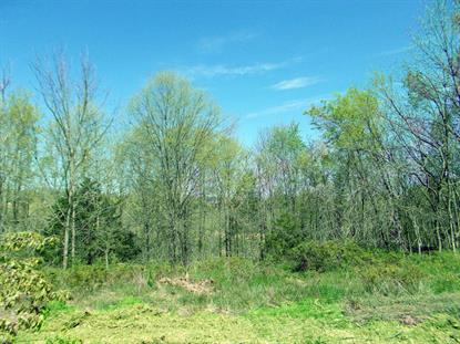 LOT 217 FARLEIGH CT, Columbia, MO