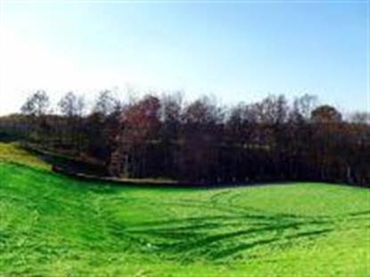 LOT 108 HEPSCOTT CT, Columbia, MO
