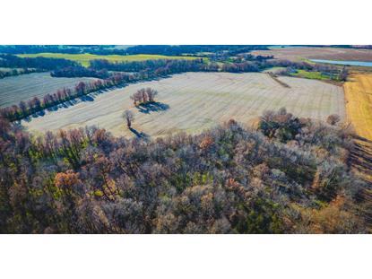 55 AC. COUNTY ROAD 215 , Kingdom City, MO