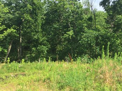 LOT 305 RUDCHESTER CT Columbia, MO MLS# 377993