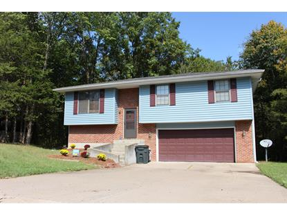 8300 W SOUTHEAST CT Columbia, MO MLS# 381334