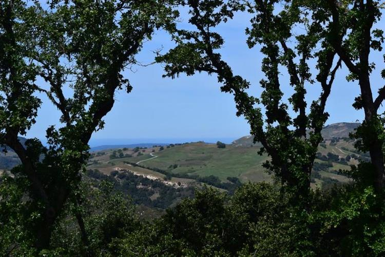 13 Long Ridge Trail, Carmel, CA 93923 - Image 1