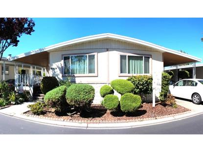 3019 Oakbridge Drive, San Jose, CA