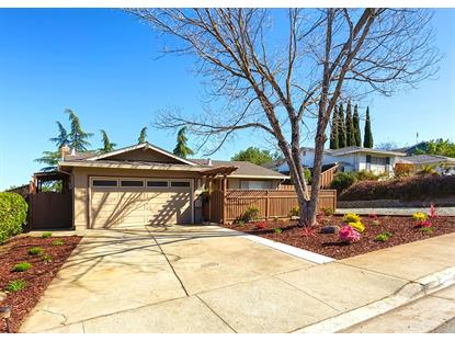 599 River View Drive, San Jose, CA