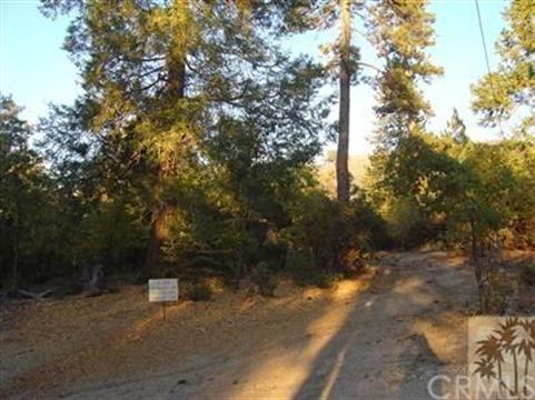 22900 Eagles Nest, Idyllwild, CA 92549