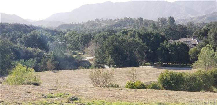 10 Vacant Land APN 2840-021-011(10 Live Oak), Canyon Country, CA 91351 - Image 1