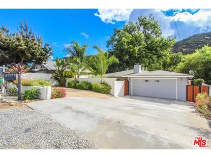 20352 LAGUNA CANYON Road Laguna Beach, CA MLS# 18393834