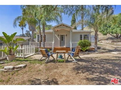 11176 TUJUNGA CANYON  Tujunga, CA MLS# 19475948