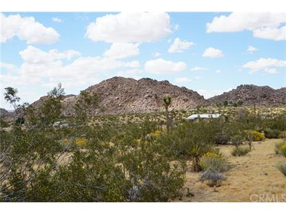 63978 Coyote Road Joshua Tree, CA MLS# JT19125538