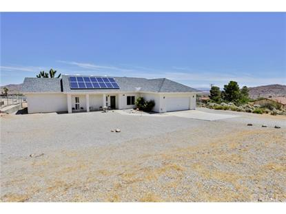 61164 Navajo Trail Joshua Tree, CA MLS# JT19130008