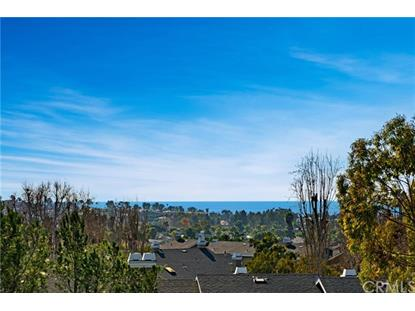 72 Terra Vista  Dana Point, CA MLS# OC19003823