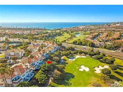19 Wightman Court Dana Point, CA MLS# OC19014425
