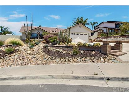 1546 Merlot Court  Vista, CA MLS# OC19140185