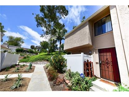 1309 Evergreen Drive Cardiff by the Sea, CA MLS# SW19141616