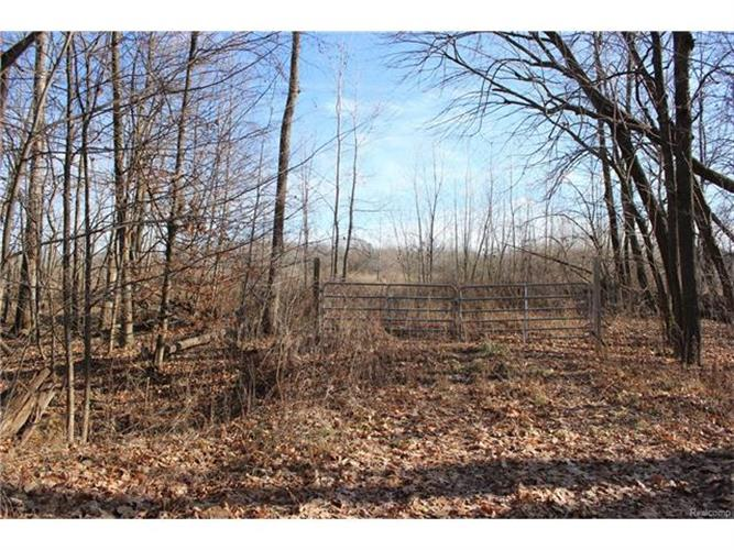 Parcel 1 Hagerman, Addison Twp, MI 48367