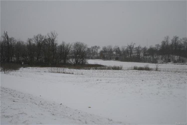 0000 KENSINGTON, Brighton Twp, MI 48380