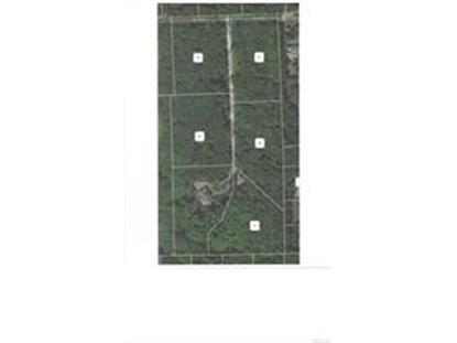 Lot E BOND TRL  Independence Twp, MI MLS# 218081146