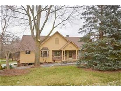 5825 PAINT VALLEY DR  Oakland Twp, MI MLS# 218113827