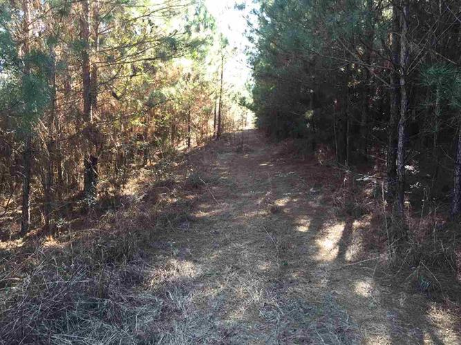MT ZION RD, Magee, MS 39111