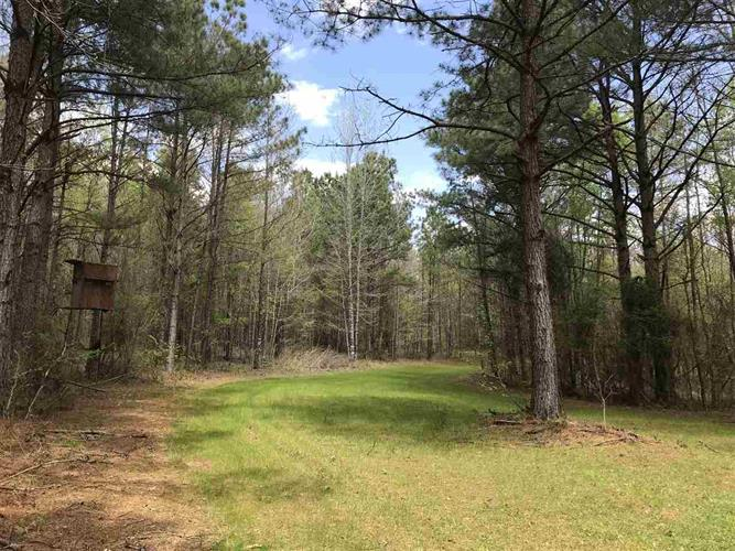 0 STEWART RD, French Camp, MS 39745 - Image 1