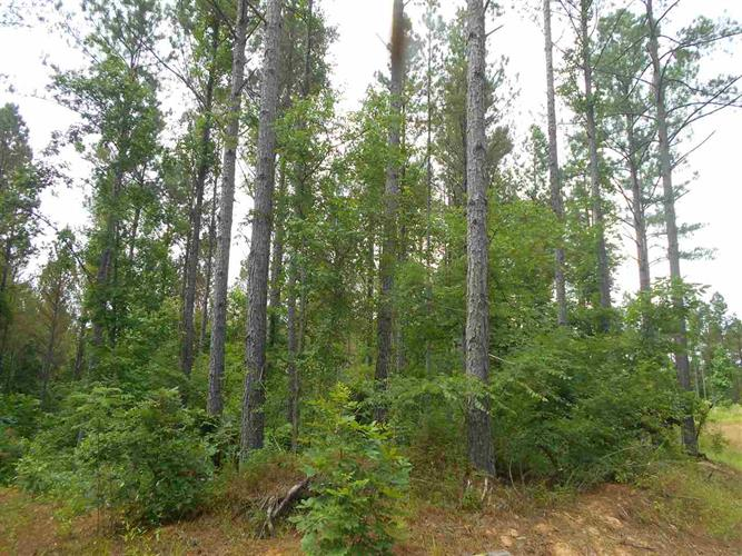 HENDRIX RD, Gore Springs, MS 38929 - Image 1