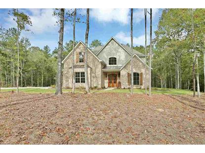 136 DOGWOOD TRACE Brandon, MS MLS# 291550
