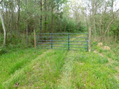 MIDWAY RD Raymond, MS MLS# 307833