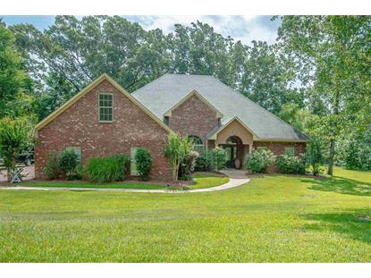 16 LAKEVIEW DR Raymond, MS MLS# 309394