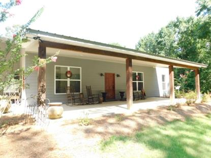 587 COAL BLUFF RD, Lena, MS