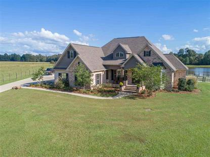 1079 HALL RD Forest, MS MLS# 313905