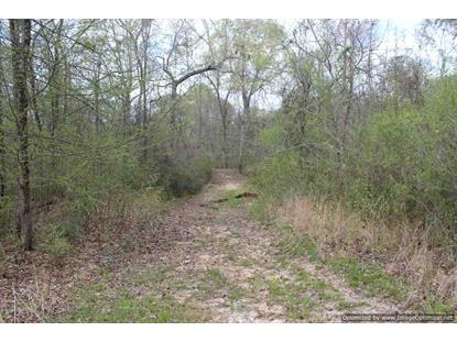 2914 HIGHWAY 3 HWY Satartia, MS MLS# 315240