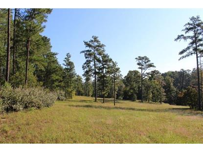 665 Horse Pen Lane Vass, NC MLS# 180885