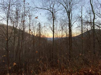 00 Woods Road  Waynesville, NC MLS# 110086