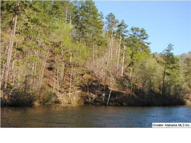 LOT 5 LAKELAND DR, Rockford, AL 35136