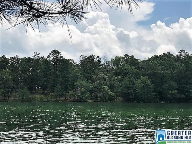 132 STONEY POINT LANDING, Double Springs, AL 35553