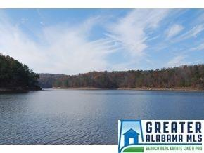Lot 13 CO RD 907, Crane Hill, AL 35053