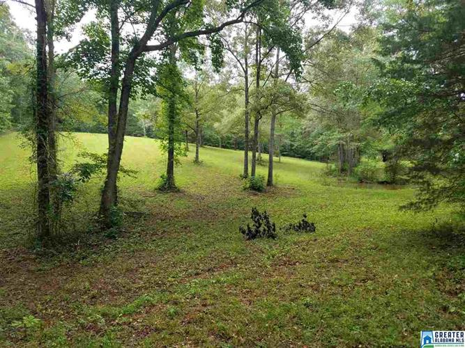 lot 7 COUNTRY AIRE RD, Montevallo, AL 35115 - Image 1