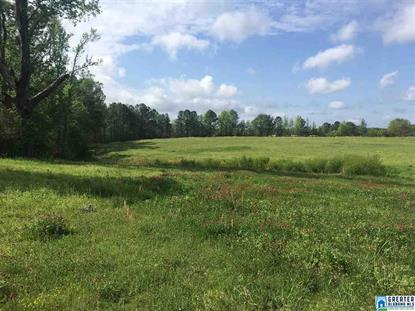 11 acres MAIN ST, Sumiton, AL
