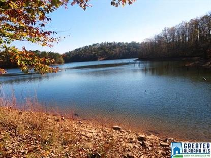 Lot 5 CO RD 2811 Lineville, AL MLS# 800848