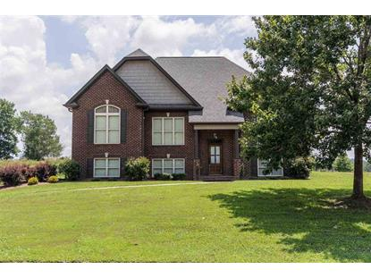 515 WILLOW BRANCH RD, Odenville, AL