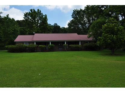13065 E CAPITAL DR Lawley, AL MLS# 851921