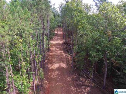 1 CO RD 19 Rockford, AL MLS# 887812