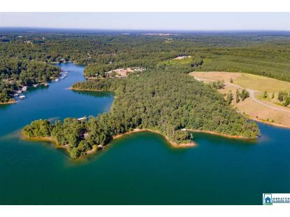 Lot 1 PINEY WOODS LN Jasper, AL MLS# 890792