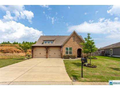 472 BLACKBERRY BLVD Springville, AL MLS# 890938