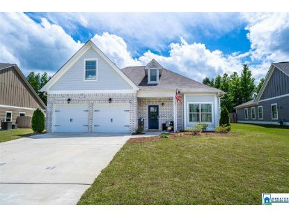220 SWEETWATER WAY Springville, AL MLS# 891173