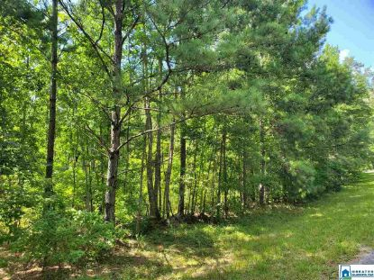58.60 CO RD 59 Rockford, AL MLS# 891332